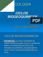 ciclos-biogeoquimicos1-1205374094921421-4