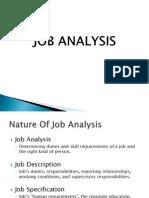 Job Analysis Final
