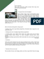 Pedoman Teknis Budidaya Kelinci