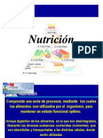 clase 812 nutricion.pdf