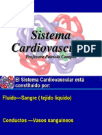 clase 912 cardiovascular.ppt