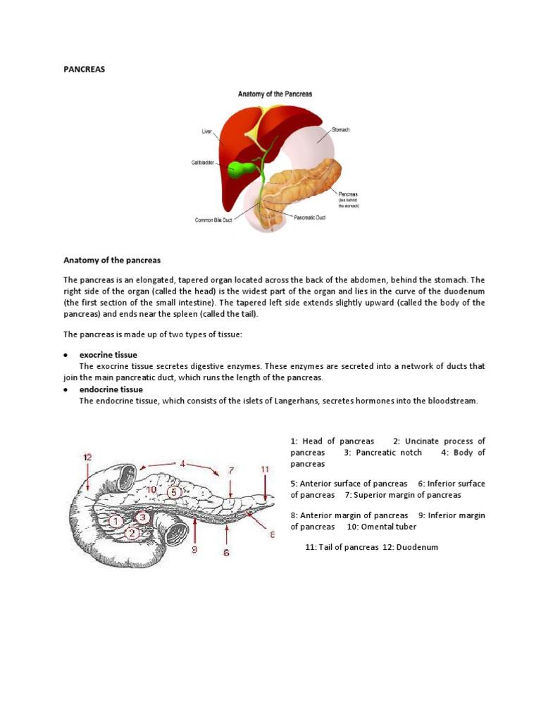Re Far at Pancreatitis 2 | Pancreas | Pancreatic Cancer