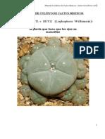 Cultivo Cactus Misticos