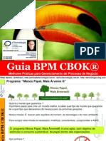 2. Guia Bpm Cbok