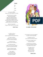 carpeta poética_ solidaridad