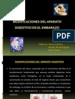 Modificaciones Del Aparato Digestivo 2