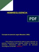 Heminegligencia y Apraxia 07062011
