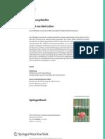 Springer Buch11