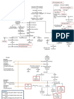 pathway-dhf-new1.doc