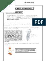 Guía 2 - Sistema de los cinco reinos