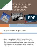Comparatia Dintre Crima Organizata, Spalarea Banilor Si Terorism