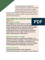 PROBLEMAS DE SALUD INFANTIL EN VENEZUELA UNIDAD I (2).docx