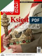 pz26_2007