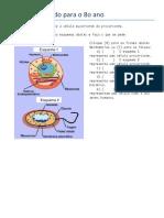 celulas para o 8o ano.pdf