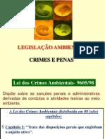 288071-Aula_4_-_Lei_da_Vida