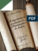 Livro eBook a Importancia de Guardarmos Os Mandamentos Do Senhor