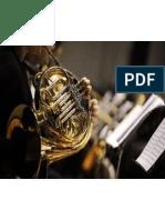 LexPhil Musician Concerns