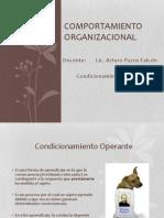 Comportamiento Organizacional8
