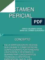 Dicertacion Pericia Caligrafica Nueva