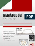 NEMÁTODOS