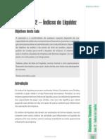 Índices de Liquidez.pdf