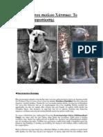 Η ιστορία του σκύλου Χάτσικο Το όνομα της αφοσίωσης