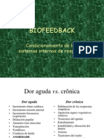 44556035 Biofeedback Porto2007