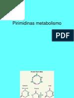Las Pirimidinas