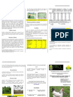 ARINA DE MATARRATON.pdf