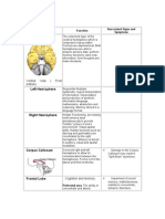 Summary of Brain
