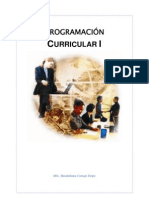 Programacion Curricular i(1)