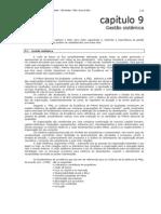 09PE Capitulo 09 Gestsistemica r1