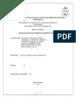 Monografia Fisica General MAS
