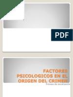 Informacion Factores Psico Del Crimen