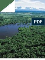 Cuencas Hidrograficas y Su Conservacion