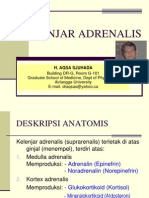 Endocrinology - Adrenal 2006