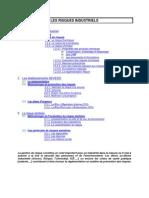 Environnement_ Risques_Industriels_20112010.pdf