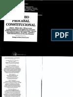 Derecho Procesal Constitucional - Pablo Luis Manili