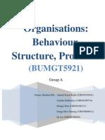 133568722 Organisation Behaviour