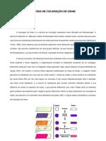 Relatório Método de coloração de Gram