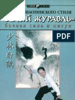 Fundamentals Shaolin Style White Crane
