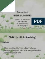 BIBIR SUMBING
