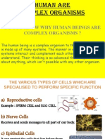 what is a complex organism