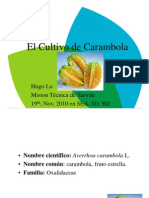 Carambola Ppt [Compatibility Mode]