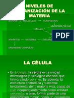MATERIAL AUDIOVISUAL CÉLULA.ppt