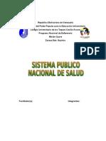 sistema publico nacional de salud.doc