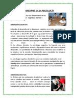3 Dimensiones de La Psicologia Afectiva, Cognitiva y Conductual