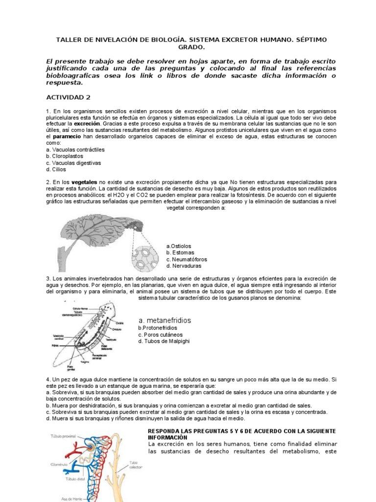 TALLER DE NIVELACIÓN DE BIOLOGÍA 7