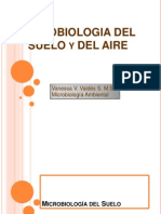 microbiologiadelsueloyaire-100616122958-phpapp01