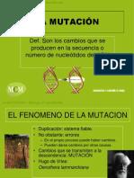 Las Mutaciones Mcm